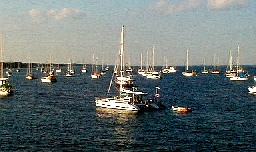 View of Boats from the Eau Gallie Causeway